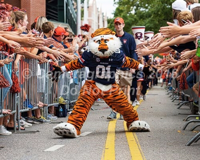 Auburn Mascot Aubie at the Tiger Walk
