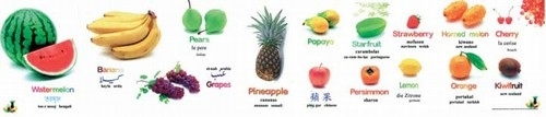 Fruit Poster-Multilingual Edition, Multicultural Poster