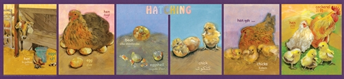 Hatching Poster - Multilingual Edition, Multicultural Poster