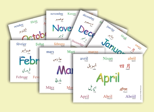 Months of the Year Cards-Multilingual Edition