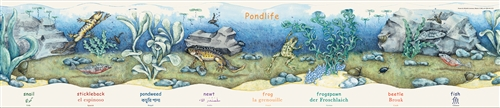 Pond Life Poster-Multilingual Edition, Multicultural Poster