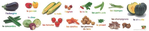 Vegetable Poster-FRENCH EDITION, Multicultural Poster