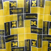 University of Michigan Wolverines