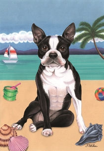 Boston Terrier on the Beach Flag SaltyPaws.com