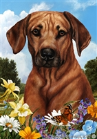 Rhodesian Ridgeback Small Decorative Garden Flag