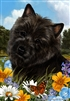 Cairn Terrier Small Decorative Garden Flag