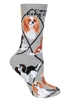 Cavalier King Charles Spaniel Novelty Socks SaltyPaws.com