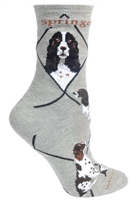 Springer Spaniel Novelty Socks SaltyPaws.com