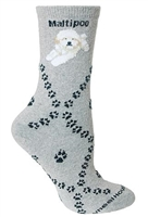 Maltipoo Novelty Socks SaltyPaws.com