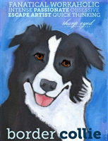 Border Collie Artistic Fridge Magnet SaltyPaws.com