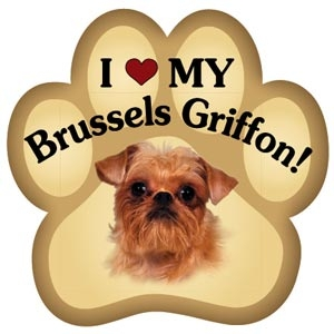 Brussels Griffon Paw Magnet for Car or Fridge