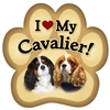 Cavalier Paw Magnet for Car or Fridge