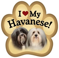Havanese Paw Magnet for Car or Fridge