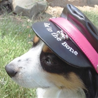 Harley-Davidson® Black Hat With Bar and Shield on Front For Dogs available at SaltyPaws.com
