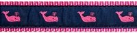 Whale Pink and Navy Ribbon Dog Collar SaltyPaws.com