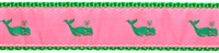 Whale Pink and Green Ribbon Dog Collar SaltyPaws.com