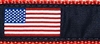American Flag Ribbon Dog Collar SaltyPaws.com