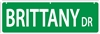 "Brittany Spaniel Street Sign ""Brittany Dr"""
