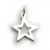 star charm (hollow)