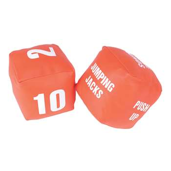 Fitness Dice By American Educational