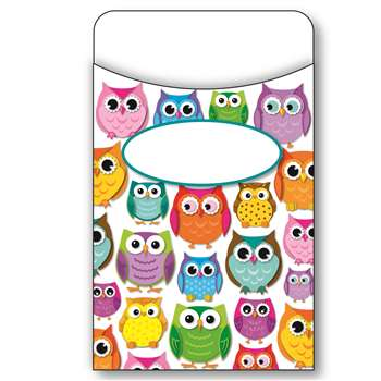 Colorful Owls Library Pockets, CD-121011