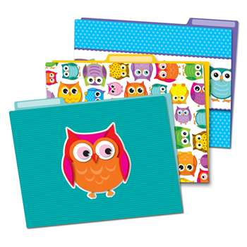 Colorful Owls Folders, CD-136009