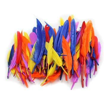 Duck Quills Feathers 14 Gram Bag, CHL63080