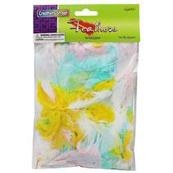 Feathers Spring Colors By Chenille Kraft