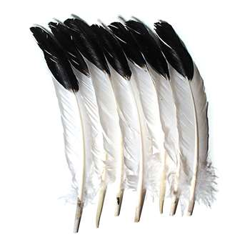 Imitation Eagle Feathers By Chenille Kraft