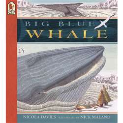 Big Blue Whale By Candlewick