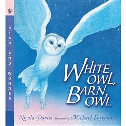 White Owl Barn Owl By Candlewick