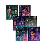 Human Body Chart Pack By Creative Teaching Press