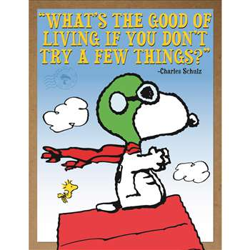 Peanuts Flying Ace Poster, EU-837245