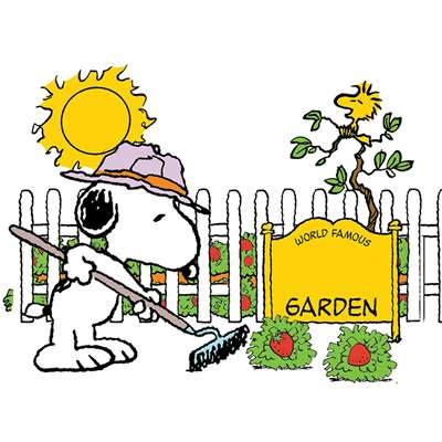 Snoopy Spring Strawberry Patch Bulletin Board St, EU-847686