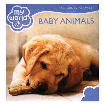 Baby Animals Board Book, GAR9781742114743