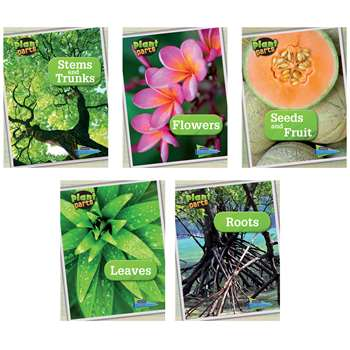 Plant Parts Book Set Of 5, HE-9781410962843