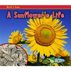 A Sunflowers Life By Coughlan Publishing Capstone Publishing