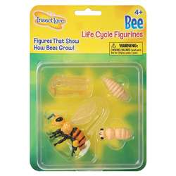 Bee Life Cycle Stages By Insect Lore