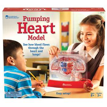 Pumping Heart Model By Learning Resources