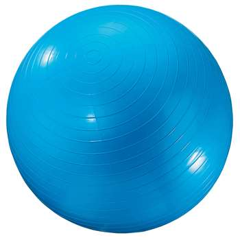 Exercise Ball 24In Blue By Dick Martin Sports