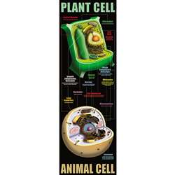 Plant And Animal Cells By Mcdonald Publishing