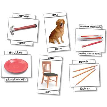 Basic Vocabulary Language Cards By North Star Teacher Resource