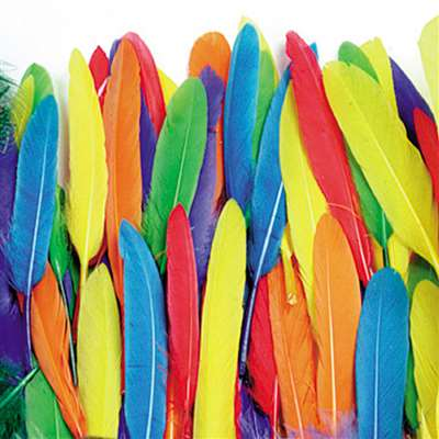 Duck Quills Assortment 3 Oz Bag, PACAC4507