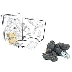 Student Owl Pellet Deluxe Classroom Kit By Pellets