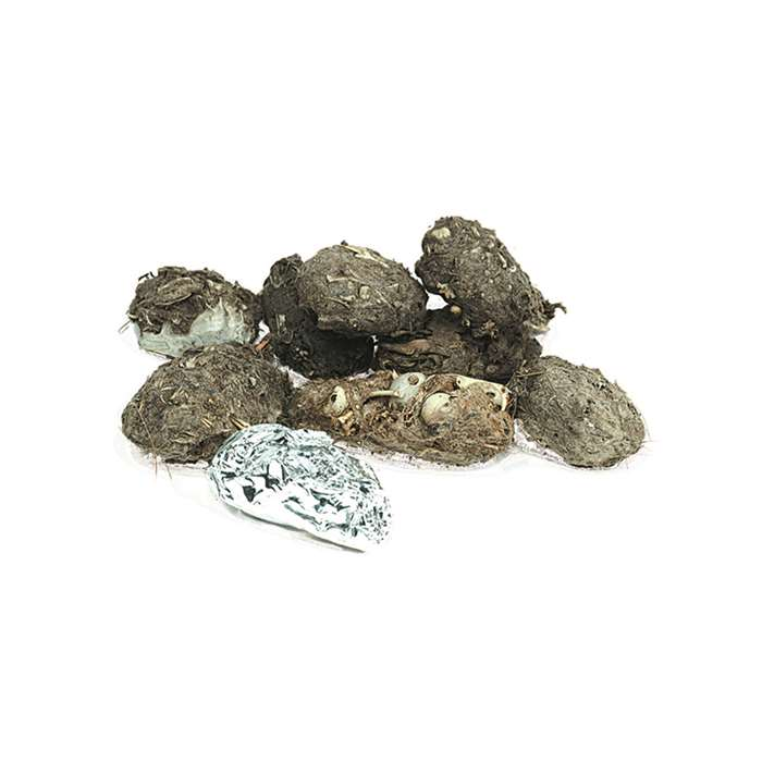 Perfect Pellet Large Barn Owl Pellets By Pellets