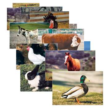 Farm Animal Poster Set Set Of 10 By Stages Learning Materials