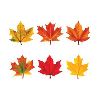Classic Accents Maple Leaves Mini Variety Pk-Discovery By Trend Enterprises