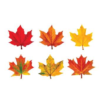 Classic Accents Maple Leaves Variety Pk-Discovery By Trend Enterprises