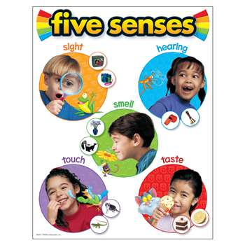 Chart Five Senses 17 X 22 Gr Pk-2 By Trend Enterprises