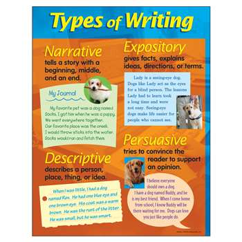 Chart Types Of Writing 17 X 22 By Trend Enterprises